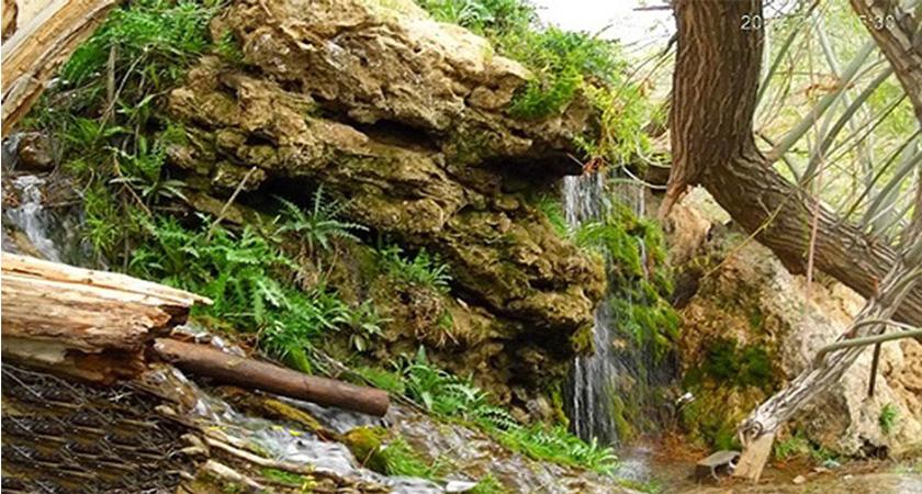 آبشار قطره باران